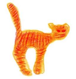 The Yogi Cat